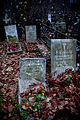 Vvedenskoe cemetery - Morozovy 06.jpg