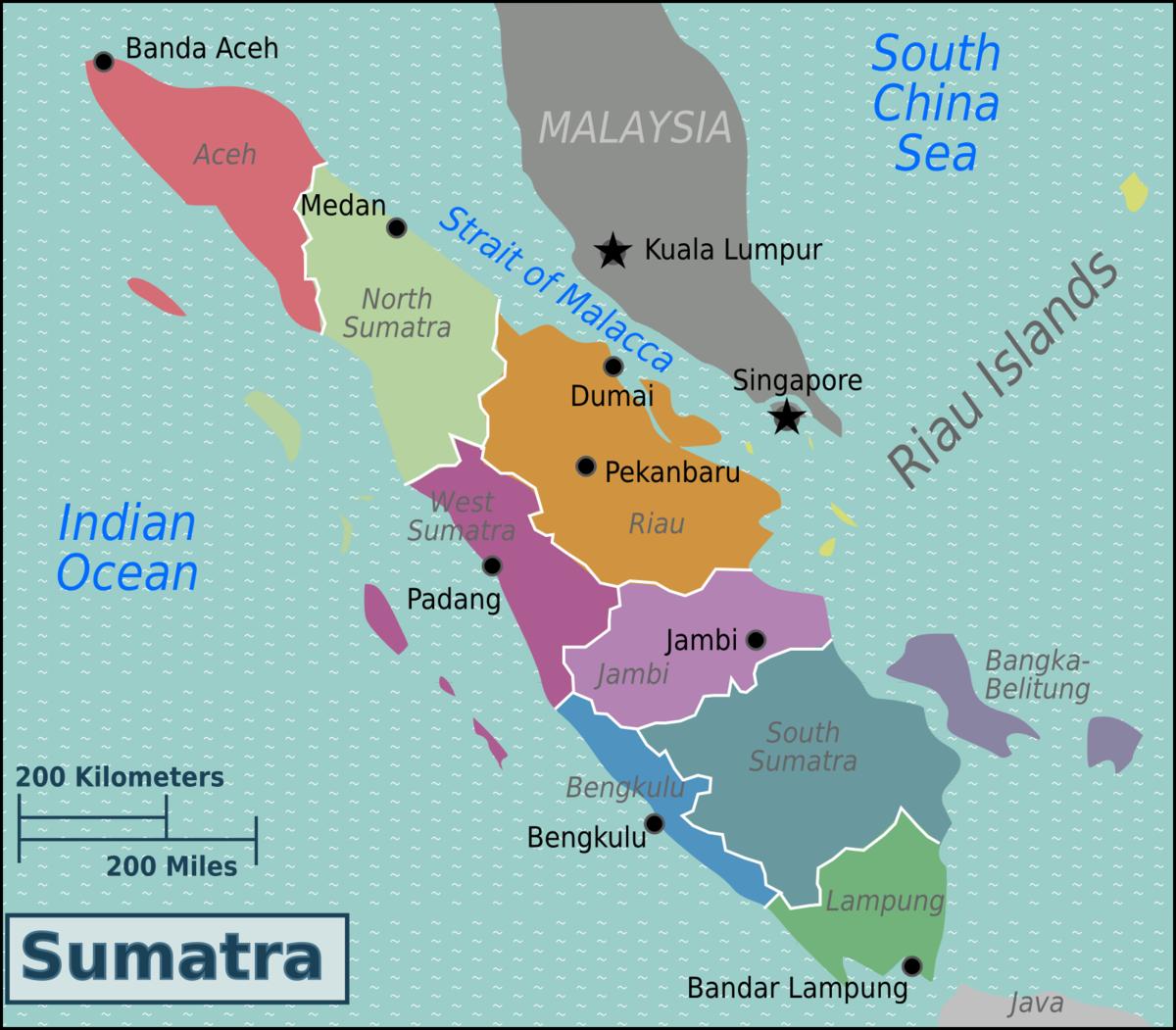 Tsunami South Island