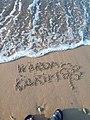 Warda sur sable.jpg