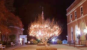 Downtown Warrenton at Christmastime: Between the Fauquier Bank and the John Barton Payne Building