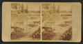 Washington Park, Chicago, from Robert N. Dennis collection of stereoscopic views.png