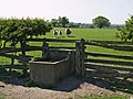Water Trough - geograph.org.uk - 419698.jpg