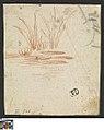 Waterlelie, circa 1759, Groeningemuseum, 0041433000.jpg