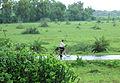 Western Railway - Views from an Indian Western Railway journey on a Monsoon Season (18).JPG
