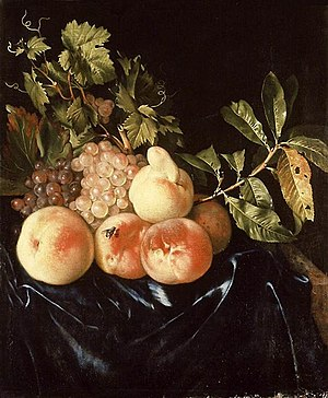 Willem Frederiksz van Royen -  Still-life of peaches and grapes