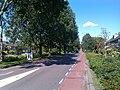 Woerden - panoramio (13).jpg