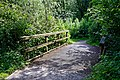 Woods Mill, Sussex Wildlife Trust, England - footpath bridge.jpg