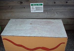 Vermicompost - Demonstration home scale worm bin at a community garden site - painted plywood