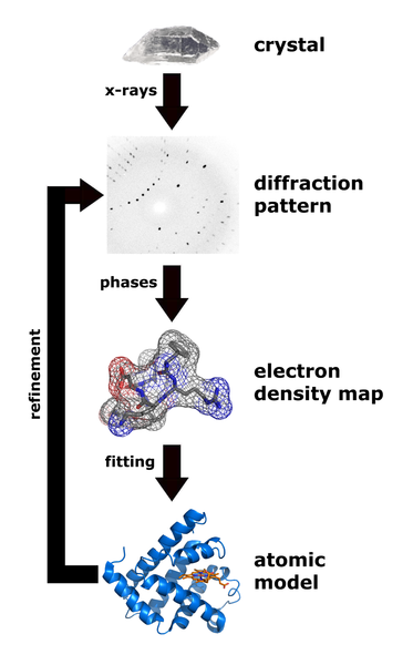 File:X ray diffraction.png
