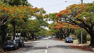 Ascot, Queensland Suburb of Brisbane, Queensland, Australia