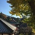 Yamanouchi, Kamakura, Kanagawa Prefecture 247-0062, Japan - panoramio (7).jpg