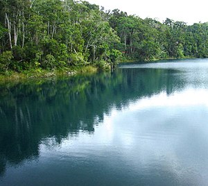 Lake Eacham - View of Lake and Lake's edge from a Queensland National Parks viewing platform.