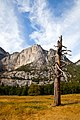Yosemite Valley-8.jpg