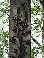 Zakopane Koscieliska cm Na Peksowym Brzysku032 A-1109 M.JPG