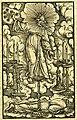 Zwinglibibel (1531) Apocalypse 01 Der Menschensohn.jpg
