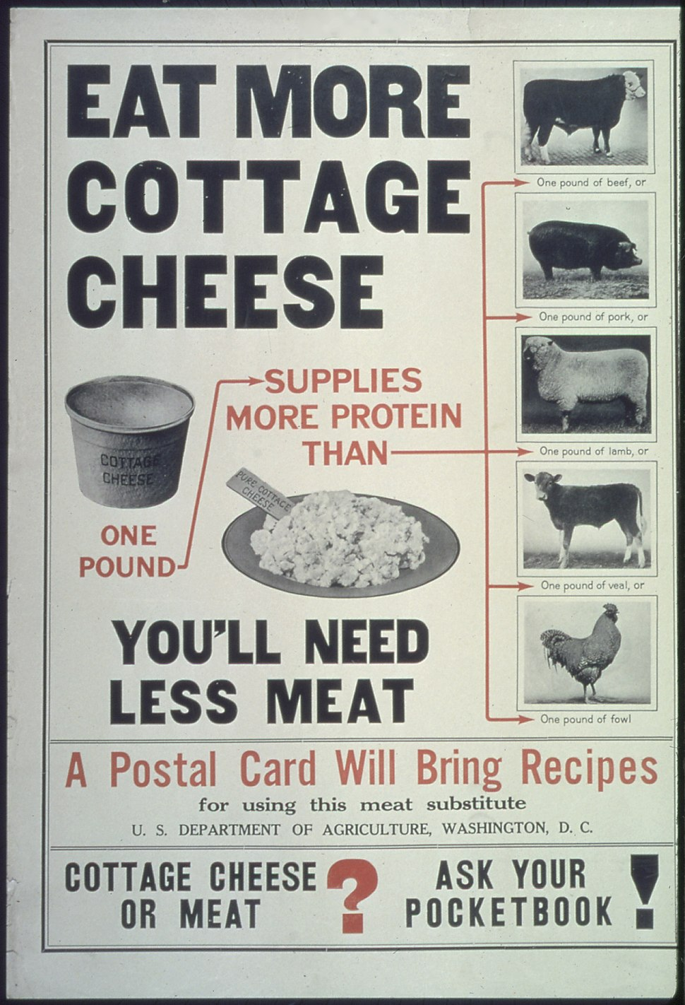 """Eat More Cottage Cheese...You'll Need Less Meat...A Postal Card Will Bring Recipes...Cottage Cheese or Meat^ Ask... - NARA - 512542"
