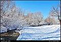 (((مناظر اطراف روستای تازه کند سفلی مراغه))) - panoramio (3).jpg