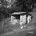 "Čebelnjak (""čemernik"") v Dolinici pod Biljano 1953.jpg"