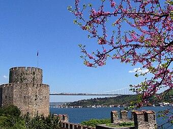 İstanbul 5702