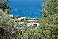 Χαλκιδική, Σιθωνία, Ελιά - Anthemus sea - panoramio (40).jpg