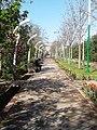 Аллеи парка им. А. Рудаки. г. Душанбе (2).jpg