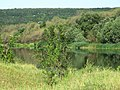 Берег річки Південний Буг біля села Бузьке.jpg