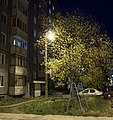 Вечер в Сыктывкаре - panoramio.jpg