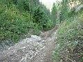 Выступающий камень на дороге - panoramio.jpg