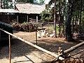 Живой уголок в Археологическом музее-заповеднике (2).jpg