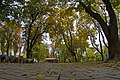 Парк імені Тараса Шевченка DSC 7067.jpg