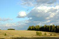 Природа в Рушинове (1760992636).jpg