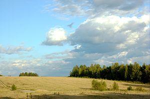 Pereslavsky District - Landscape near the village of Rushinovo in Pereslavsky District