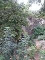 Природни споменик Миоценски спруд Ташмајдан 012.JPG