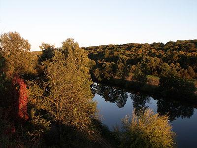 Сутиський парк 28.JPG
