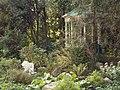 Украина, Киев - НУБиП, ботанический сад.jpg