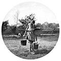 Чиназ 1890 г.jpg