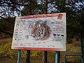 Якутский зоопарк 33.JPG