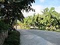 南山寺景区风光 - panoramio.jpg
