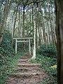 奥の院への道 - panoramio.jpg