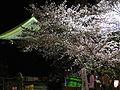 篠山城夜桜.JPG