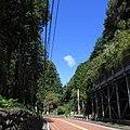 青梅街道-03 - panoramio.jpg