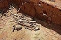 0342 marokko 31.03.2014 (38697097171).jpg