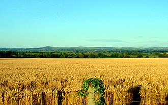 Arable land - Modern mechanized agriculture permits large fields like this one in Dorset, England.