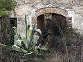 066 Atzavara davant un casalot en ruïnes a Marmellar.JPG
