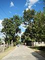 09119jfZone Balungao Santa Maria San Marcelino Pangasinan Nueva Vizcaya Roadfvf 08.JPG