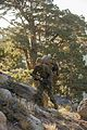 1-6 MTX 5-15 Land Navigation and rappelling 150916-M-OU200-093.jpg