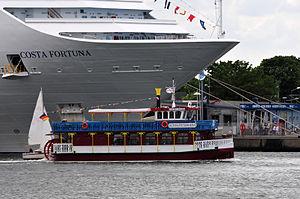 12-06-09-costa-fortuna-by-ralfr-30.jpg