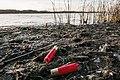 12 Gauge Waterfowl Hunting Shotgun Shells on Lake Lida, Minnesota (37770144101).jpg