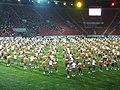 15. sokolský slet na stadionu Eden v roce 2012 (55).JPG