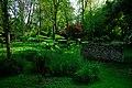 150510 174510 Giardino di Ninfa.jpg